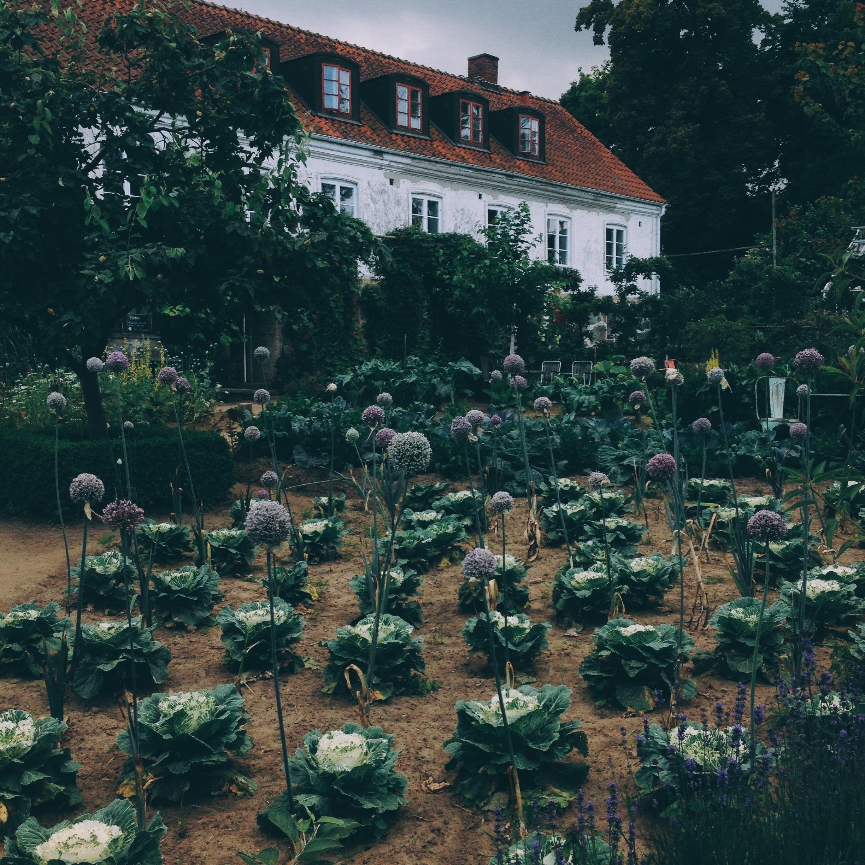 mandelmanns gård öppettider